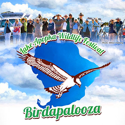 Lake Apopka Wildlife Festival: Birdapalooza